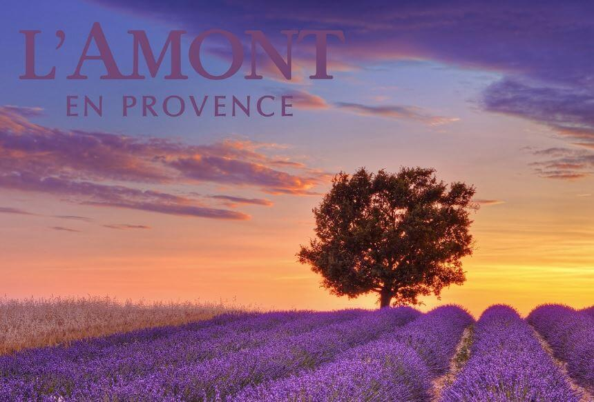 sua-tam-lamont-en-provence