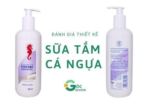 Thiet-Ke-Sua-Tam-Ca-Ngua