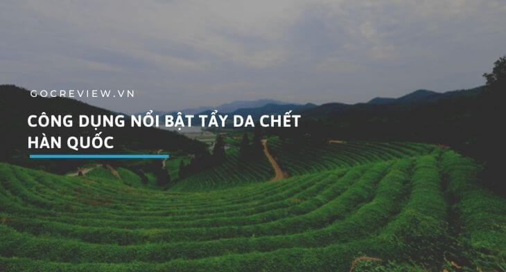 Cong-dung-tay-da-chet-Han-Quoc